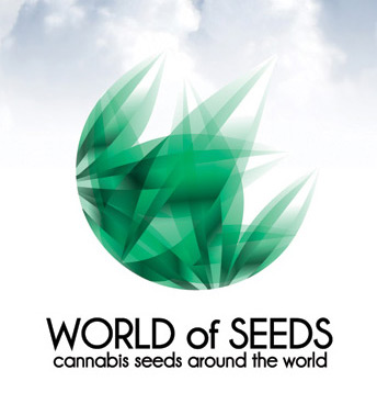 World of Seeds Afghan Kush x Black Domina 12ks
