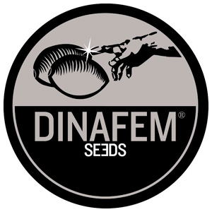Dinafem Seeds California Hashplant 10ks