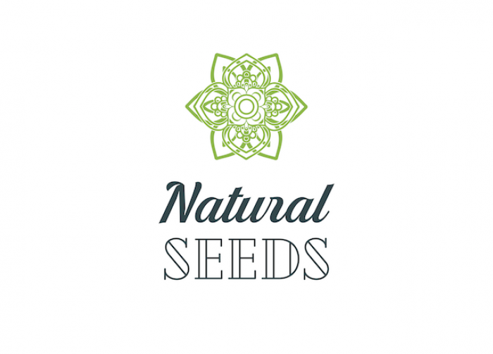 Natural Seeds Bud Forty5 6ks