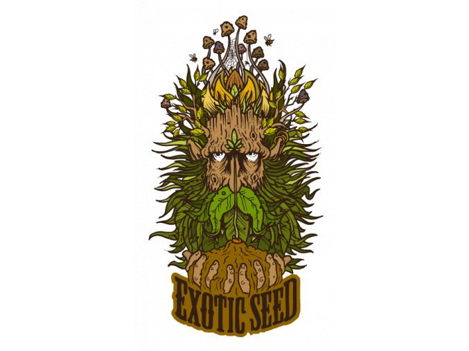 Exotic Seeds Zkittalicious 10ks