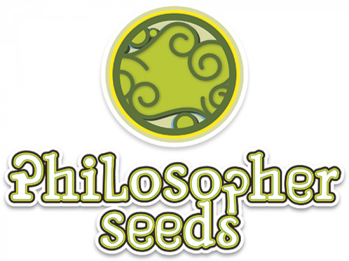 Philosopher Seeds GOLO line Spicy CBD 3ks