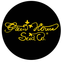 Green House Seeds Himalaya Gold 3ks